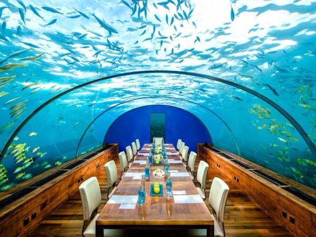 Hotéis Submersos: suas férias no fundo do mar