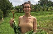 Nascida na Argentina em 1972, numa família de imigrantes italianos, Paola foi eleita chef do ano pela Veja