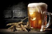 A bebida preferida de muitos homens tem uma história bem antiga e de seu universo fazem parte diversos termos interessantes