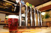 Promoção chamada Amigo do Urso está dando cerveja de graça até o fim de Dezembro