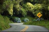 Estrada da Graciosa: belas paisagens ao longo de seus 30 quilômetros
