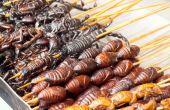 """Algumas comidas excêntricas surpreendem até quem se considera dono de um """"estômago de avestruz"""""""