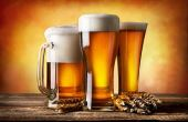Com diversos formatos e utilidades, cada corpo de cerveja oferece uma experiência diferente no momento da degustação
