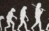 Centenas de milhares de anos foram necessários para esculpir o que todo homem carrega entre as pernas